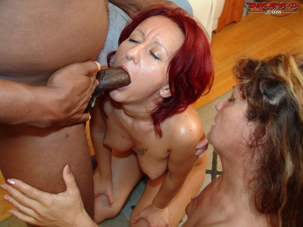 Interracial lesbian pussy eating 69 style
