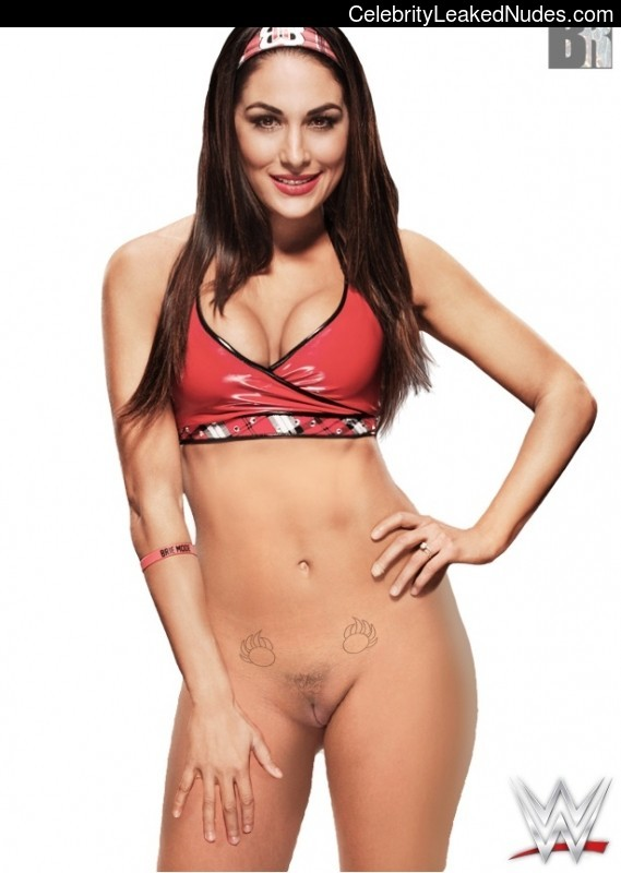 brie bella bella naked Nikki and