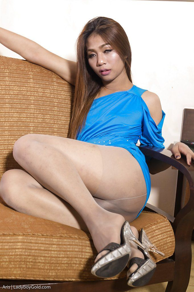 Asian hairy pussy galleries
